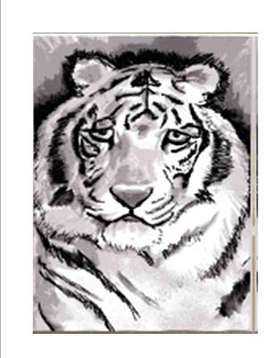 White Tiger Art Print by Terry Groehler