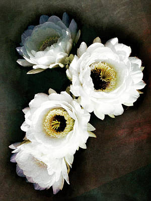 Photograph - White Torch Blooms by Sandra Selle Rodriguez