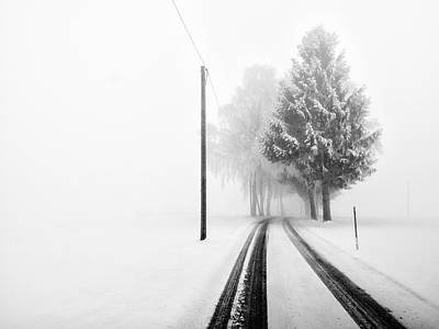 Snowy Roads Photograph - White Tree Gate by Franz Bogner
