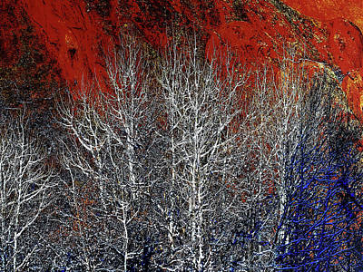Digital Art - White Trees  Red Rocks  by OLena Art Brand
