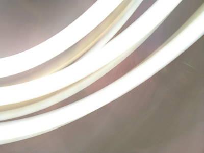 Photograph - White Tubes by Lynn-Marie Gildersleeve