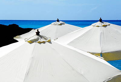 White Umbrellas Art Print by Karen Wiles