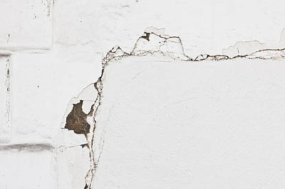Messy Photograph - White Wall by Tom Gowanlock