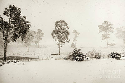 Snow Scene Wall Art - Photograph - White Washed by Jorgo Photography - Wall Art Gallery
