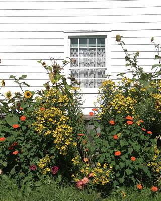 Photograph - White  Window And Flowers by Valerie Kirkwood