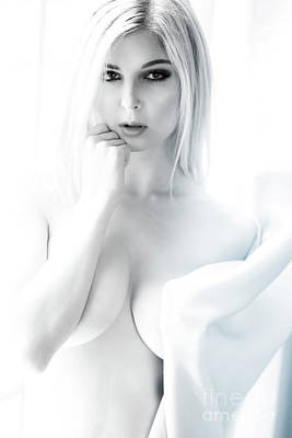 Provocative Photograph - White Window by Jt PhotoDesign