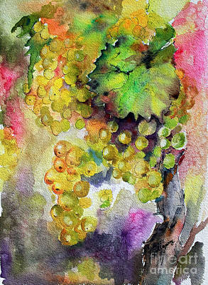 Cognac Painting - White Wine Grapes Vineyard Watercolor Painting by Ginette Callaway