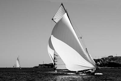 Observer Photograph - white wings - A classical one mast vessel under white sails by Pedro cardona by Pedro Cardona
