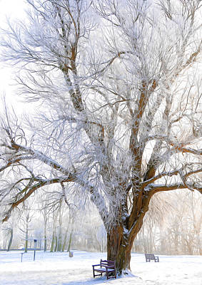 White Winter Tree Art Print by Svetlana Sewell