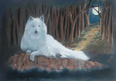 White Wolf Art Print by Charles Hubbard