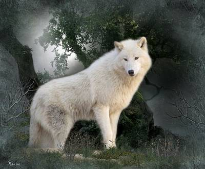 Digital Art - White Wolf Snuggles 2 by Ali Oppy