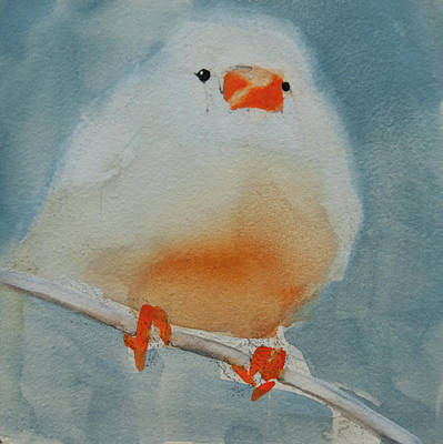 Painting - White Zebra Finch by Jani Freimann