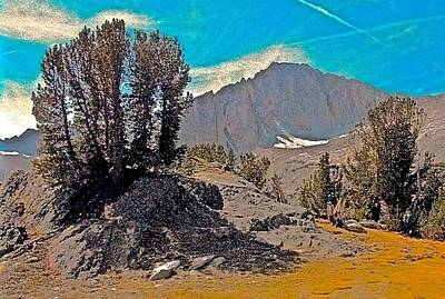 Whitebark Pines Photograph - Whitebark Pine And North Peak Natural by Scott L Holtslander