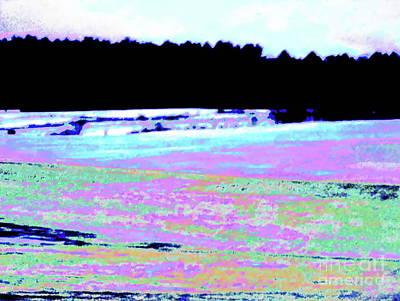 Photograph - Whitefield Spring by Expressionistart studio Priscilla Batzell