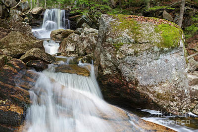Photograph - Whitehouse Brook - Lincoln, New Hampshire by Erin Paul Donovan
