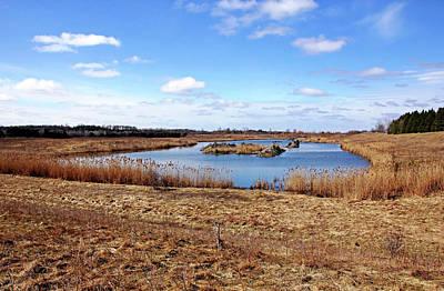 Photograph - Whitelaw Trail Pond by Debbie Oppermann