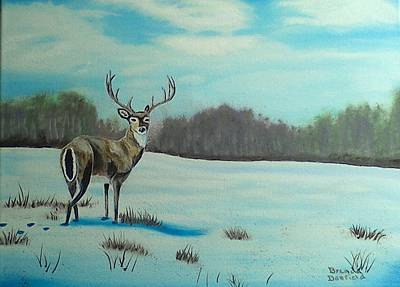 Whitetail Buck Art Print
