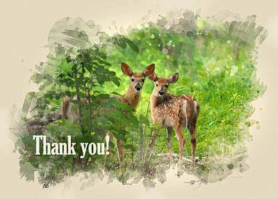 Mixed Media - Whitetail Deer Fawns Watercolor Thank You Card by Christina Rollo