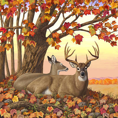 Whitetail Deer - Hilltop Retreat Art Print by Crista Forest