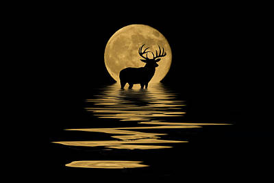 Nature Mixed Media - Whitetail Deer In The Moonlight by Shane Bechler