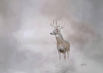 Digital Art - Whitetail Deer by Lena Auxier