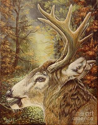 Painting - Whitetail Hideaway by Amanda Hukill