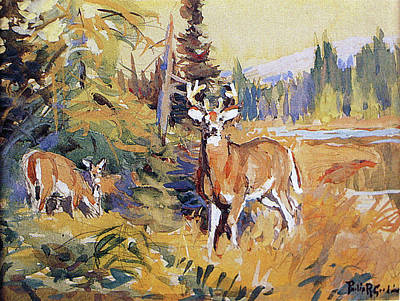 Painting - Whitetails By Glade by Philip R Goodwin