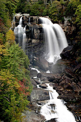 Photograph - Whitewater Falls - Nc by Shari Jardina