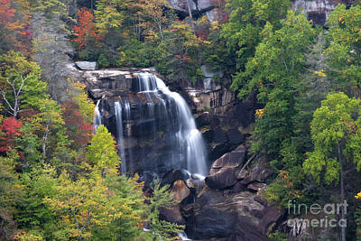 Photograph - Whitewater Falls In Nc by Jill Lang