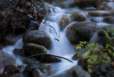 Photograph - Whitewater by Randy Hall