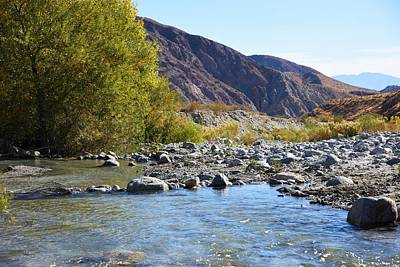 Photograph - Whitewater River by Lisa Dunn