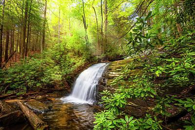 Photograph - Whitewater Rushing Through The Forest  by Debra and Dave Vanderlaan