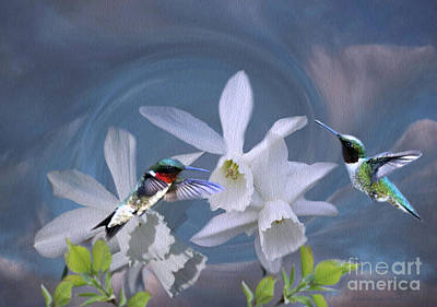 Photograph - Whirlwind Hummers by Sandra Huston