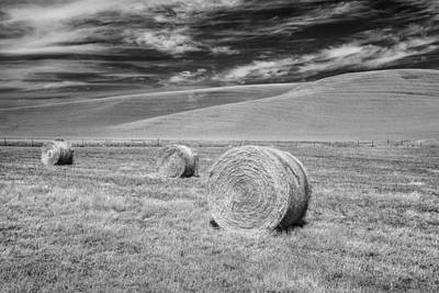 Photograph - Whitmann County Work by Jon Glaser