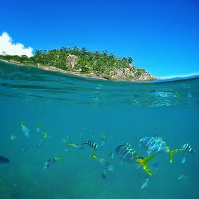 Photograph - Whitsunday Colours by Keiran Lusk