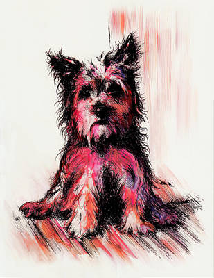 Puppy Drawing - who am I by Rachel Christine Nowicki