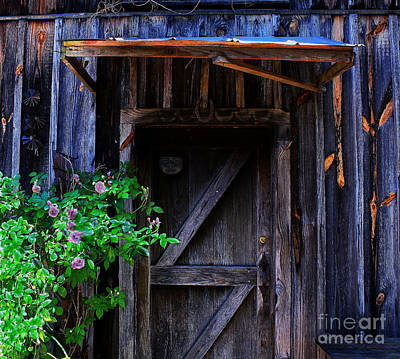 Old Door Photograph - Who Is Living Here by Barbara Teller