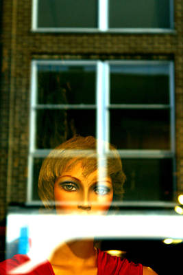 Photograph - Who Is Staring by Jez C Self