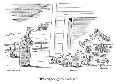Drawing - Who Tipped Off The Turkey by Mick Stevens