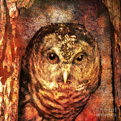 Digital Art - Who Whoo Yoo 2015 by Kathryn Strick