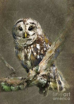 Whoooo Art Print by Betty LaRue