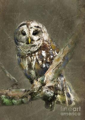 Impressionism Photos - Whoooo by Betty LaRue