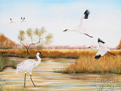 Whooping Cranes-jp3151 Original