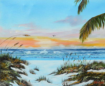Why Not Siesta Key Art Print