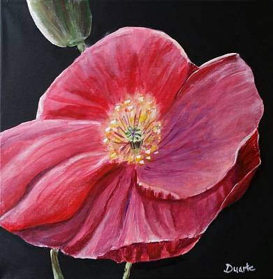 Painting - Shirley Poppy by Carol Duarte