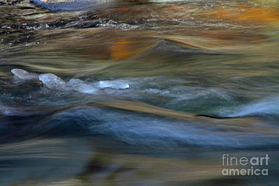 Photograph - Whychus Creek by Gary Wing