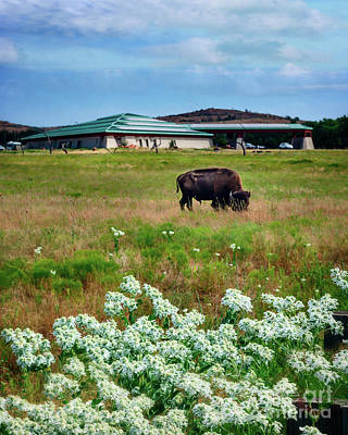 Photograph - Wichita Mountain Wildlife Reserve Welcome Center Verticle by Tamyra Ayles