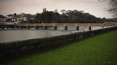 Photograph - Wicklow Footbridge by Tim Nyberg