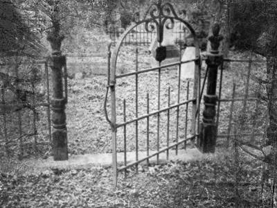 Photograph - Wide Is The Gate by Kate Word