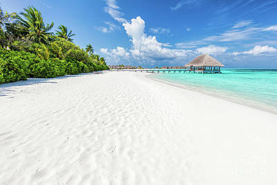 Hot Photograph - Wide Sandy Beach On A Tropical Island In Maldives by Michal Bednarek
